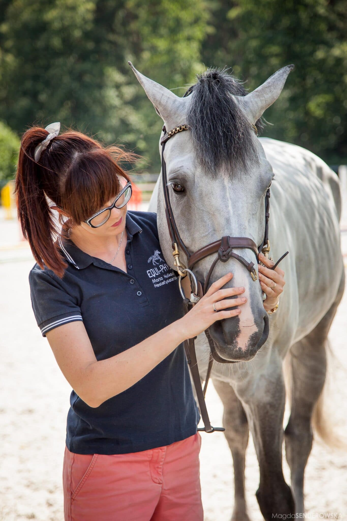 Hestefysioterapeut Sjælland